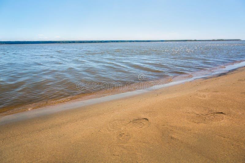 The shore of the lake, summer, beach royalty free stock photos