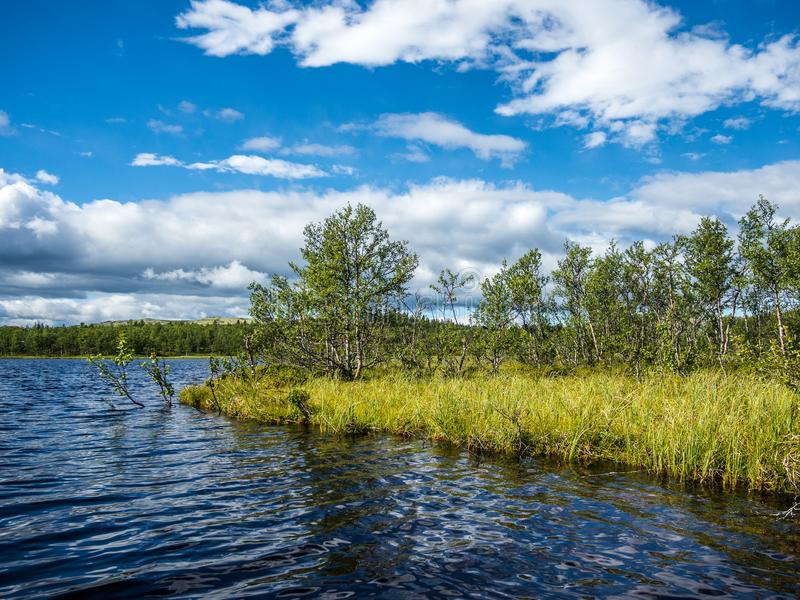 Shore of a Norwegian lake in the Rondane National Park royalty free stock image