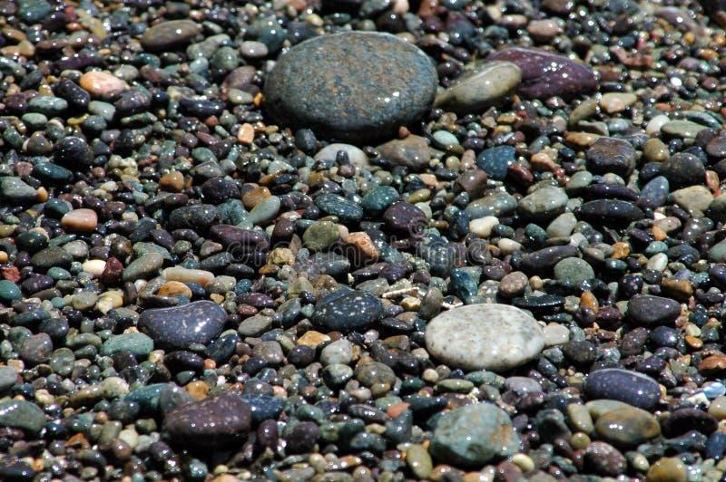 Shore Pebbles Stock Image