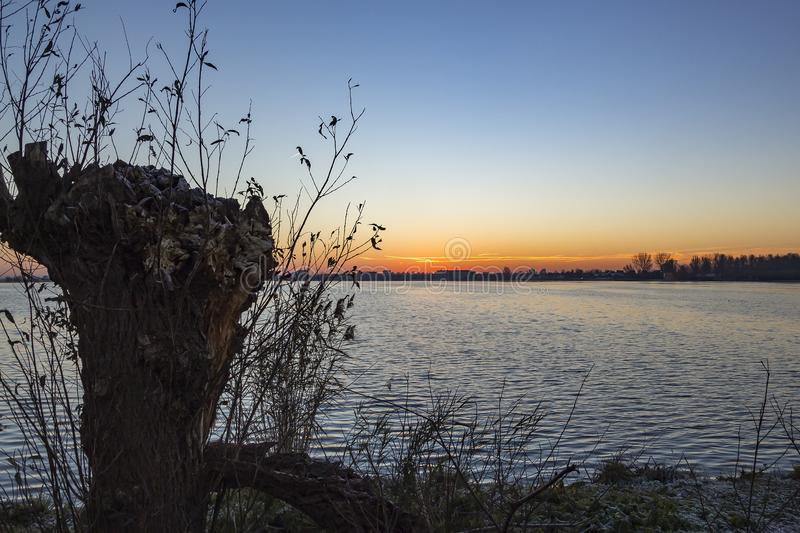 From the shore with a pollard willow you can see a beautiful sunrise above the lake Zoetermeerse plas.  royalty free stock photography