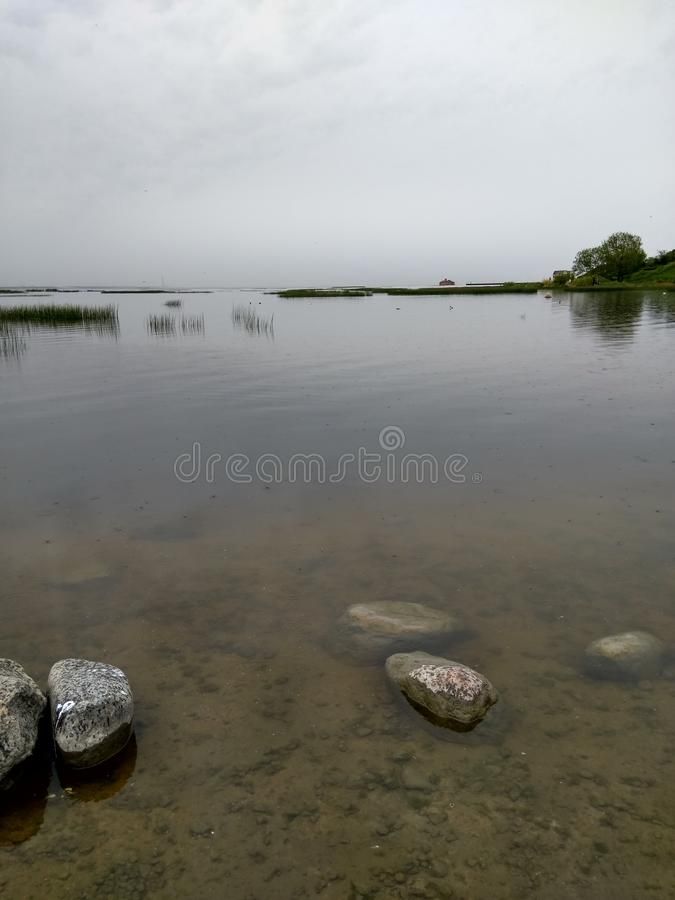 The shore of the pond, clear water stock photo