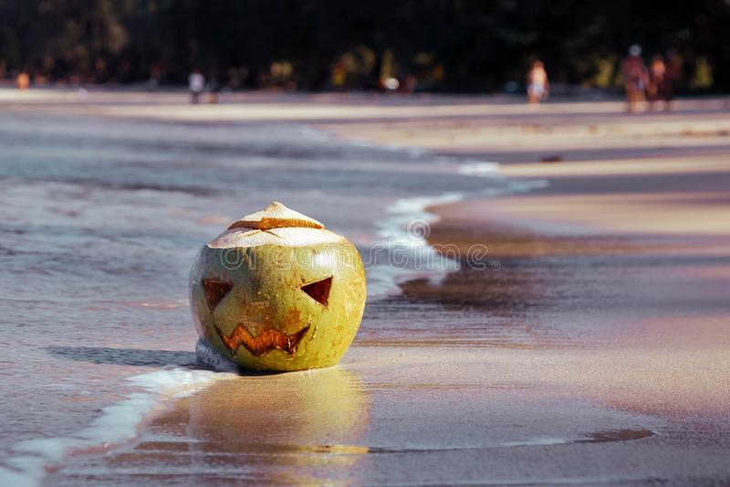 The shore of a tropical island. On the beach in sand lies a coconut with a terrible Halloween face carved on it. Sunny day. Magenta toned stock images