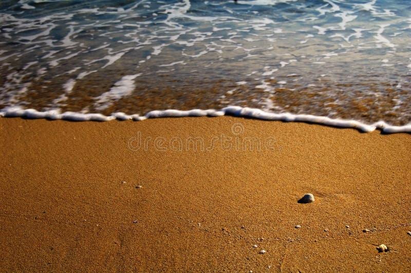 Download Shoreline Background Stock Photography - Image: 7092452