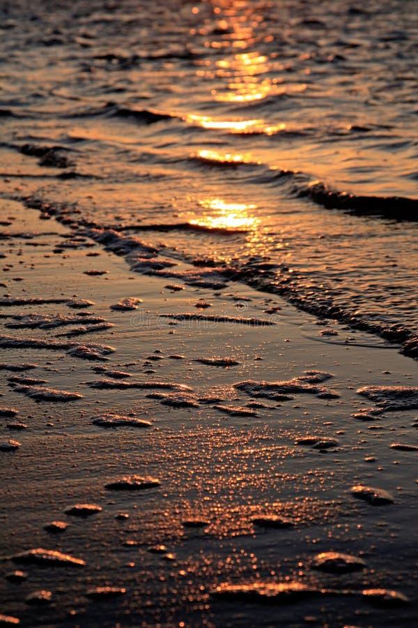 Download Shoreline delight stock photo. Image of bright, beach - 12288464