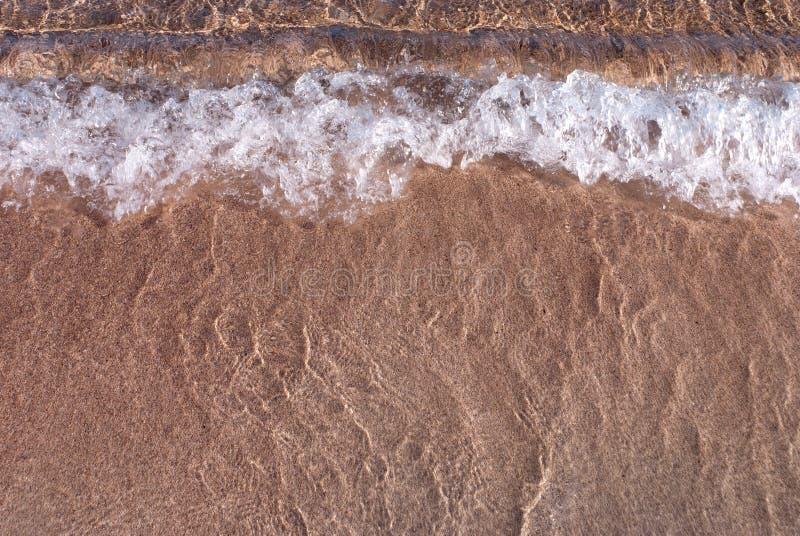 Download Shoreline at La Maddalena stock photo. Image of summer - 19487458