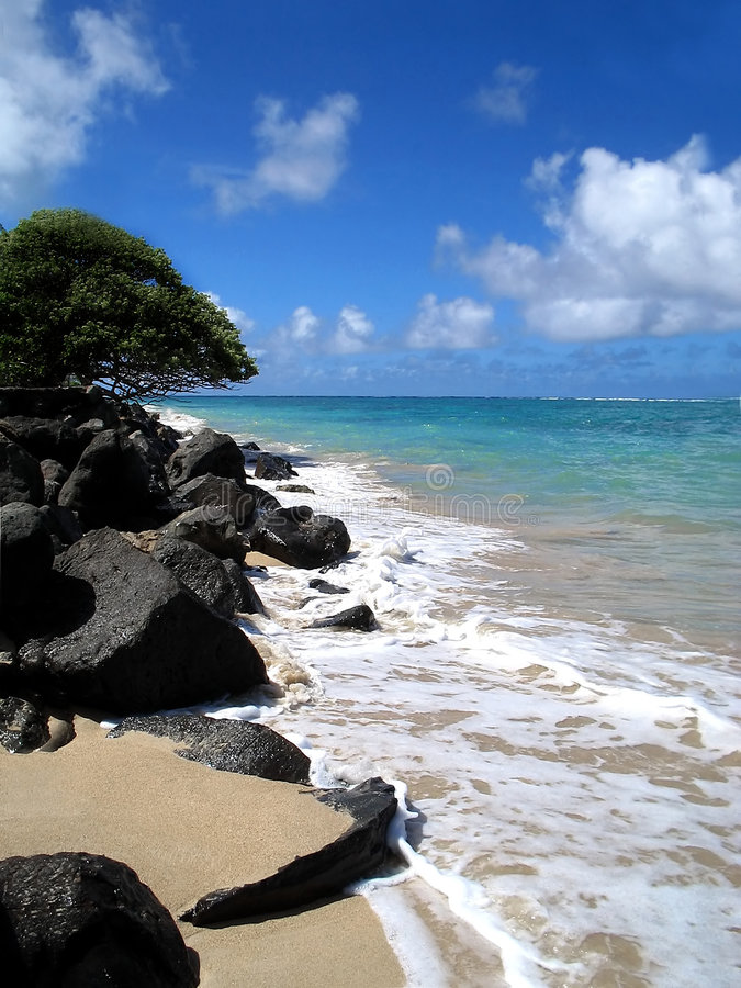 shoreline lovart royaltyfri foto