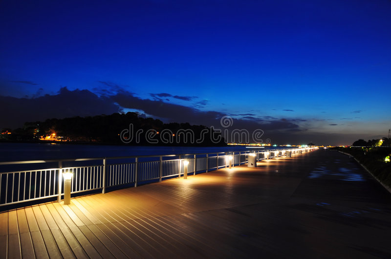 Shoreline At Night Stock Images
