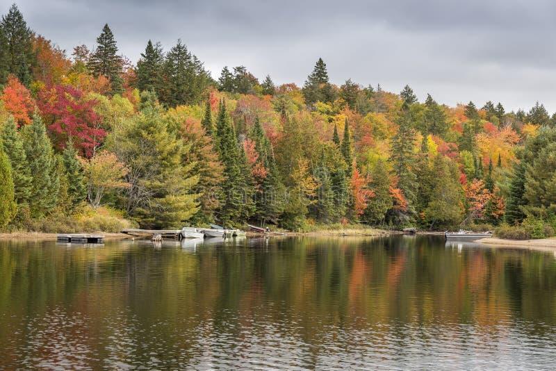 Shoreline variopinto in autunno con i motoscafi messi in bacino - Ontario, C immagine stock