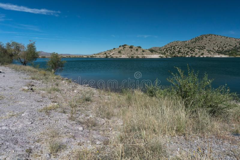 Shoreline brush at Bill Evans Lake in New Mexico. stock images