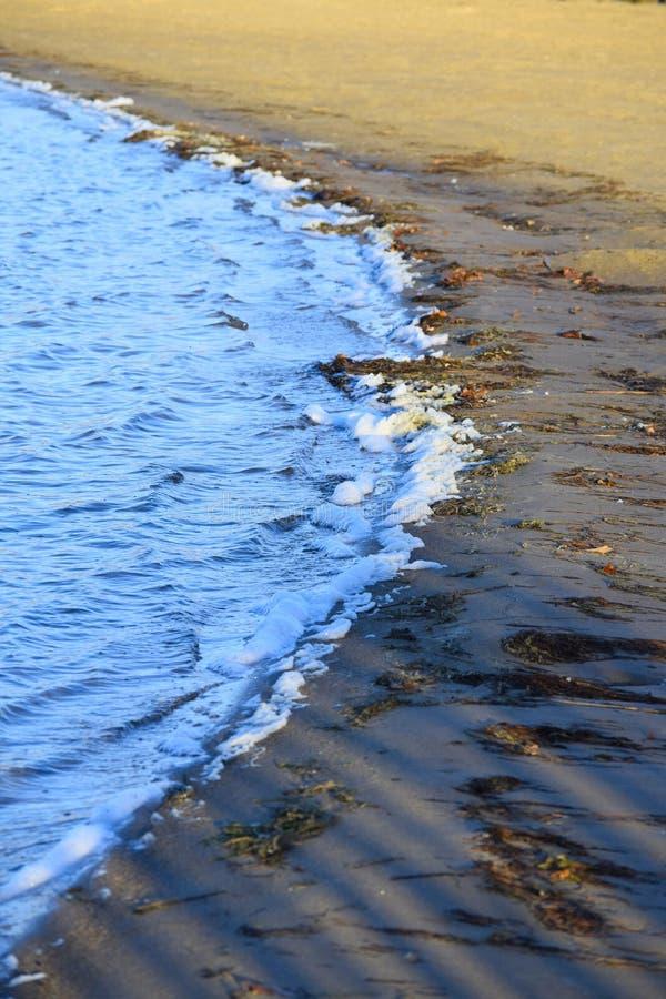 Shores of Lake Ovid stock photos