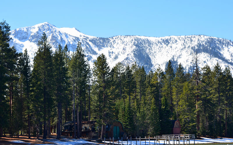 The shores of Lake Tahoe, California. royalty free stock photos