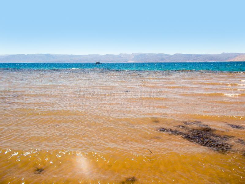 Shores of the red sea stock photography