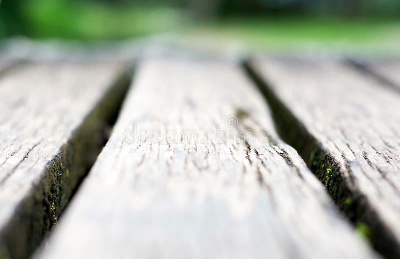 Short depth of field gray wooden boardwalk weathered. With rough textured and moss stock photo