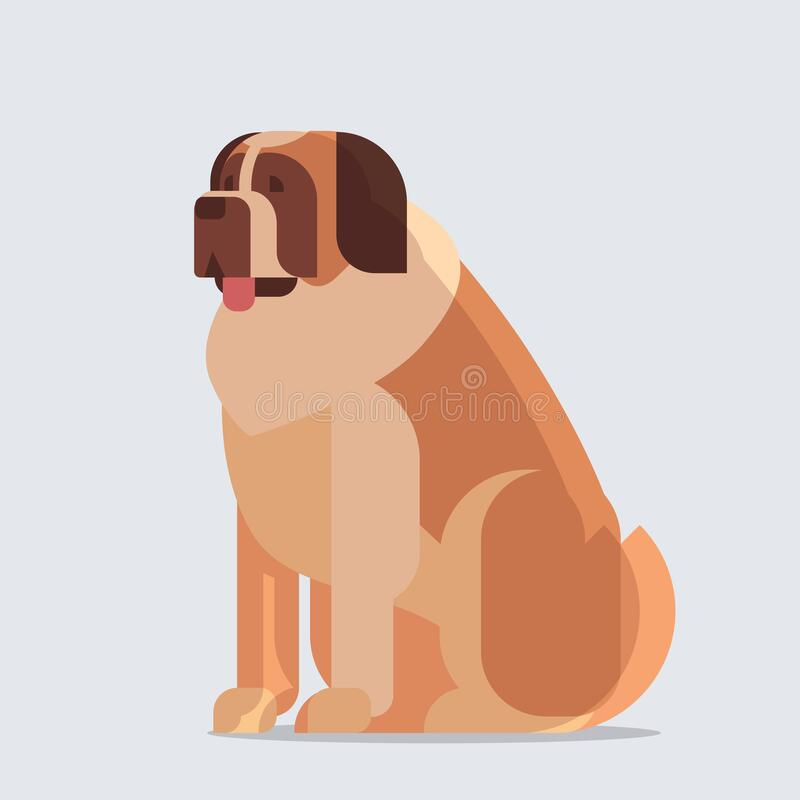 Free Short-haired Saint Bernard Dog Icon Furry Human Friend Home Animal Concept Full Length Royalty Free Stock Photography - 169713397