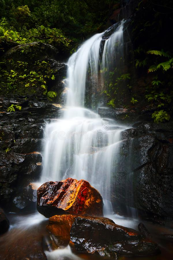 A short hike will bring you to Edith Falls, a pretty waterfall located in The Valley of the Waters, Wentworth Falls Blue Mountains royalty free stock photos
