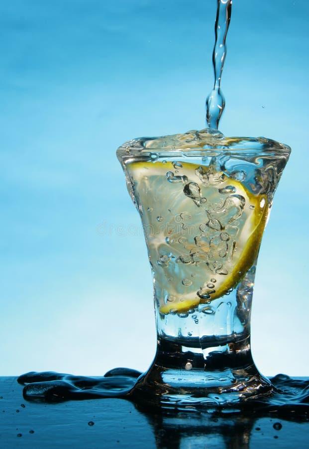 Short o vidro com fatia do limão fotos de stock royalty free