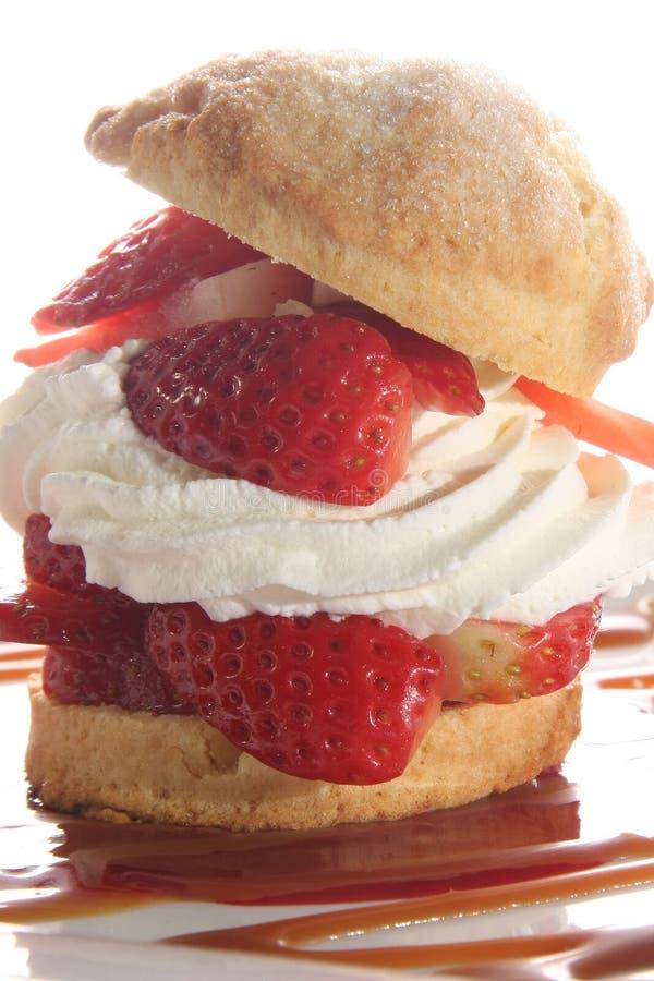 shortcake truskawka zdjęcie stock