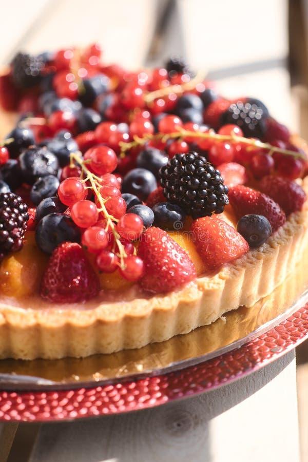 Shortcake z czarnymi jagodami, truskawkami i rodzynkami, obrazy stock