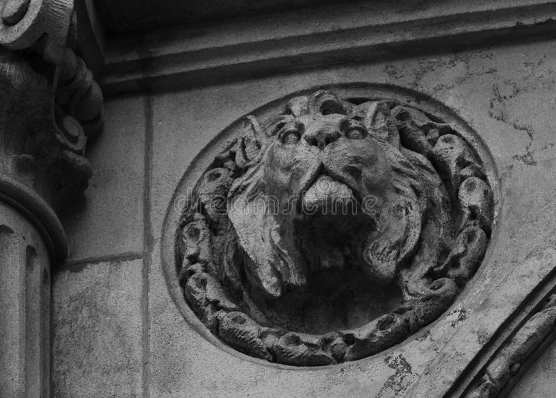 Serious lion. Shot in black and white. Detail on the sculpture on the facade of this historic building, representing a lion. Set in Eixample, Barcelona royalty free stock photo