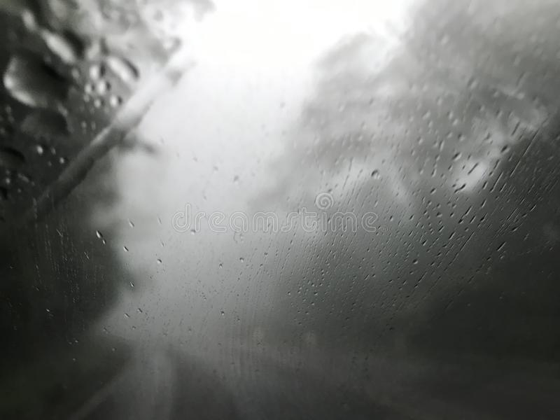 Shot from car's windshield of raining and fog in the middle of pine forest royalty free stock photos
