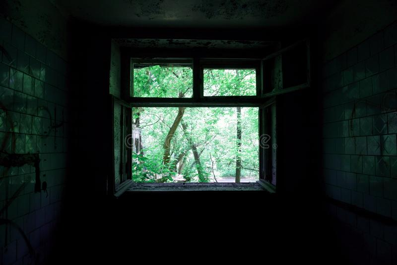 Bright green view through the window of the dark room stock photography