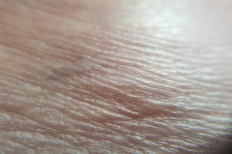 Shot of human skin leg royalty free stock image
