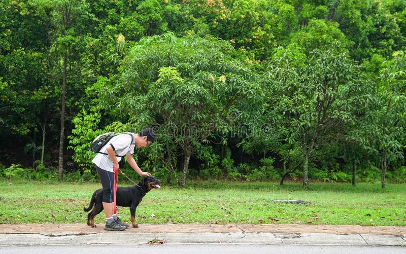 Man walking dog. Shot of a man walking his dog with nature or park background royalty free stock image