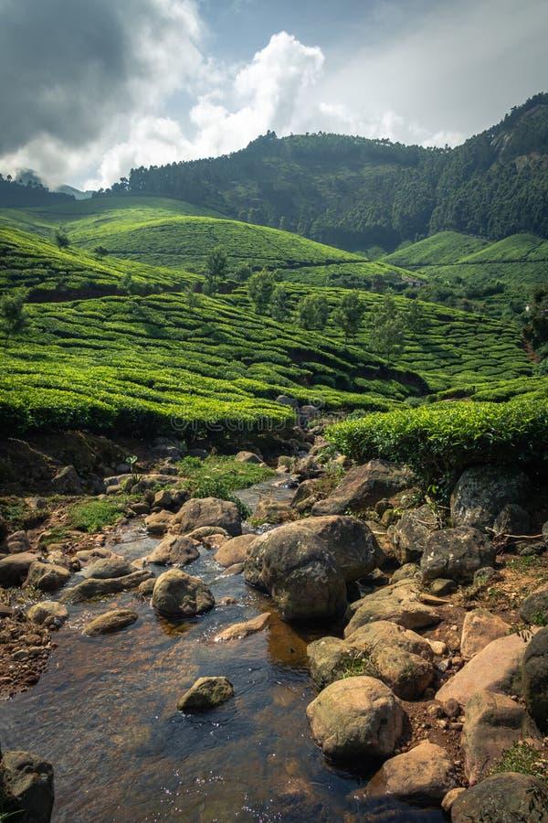 Munnar landscape mountain valley and water body from south India Kerala. Shot of Munnar landscape mountain valley and water body from south India Kerala stock photos