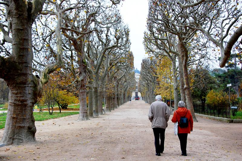 An elderly couple walking along the park in Paris, wondering on an alley between the high trees stock photos