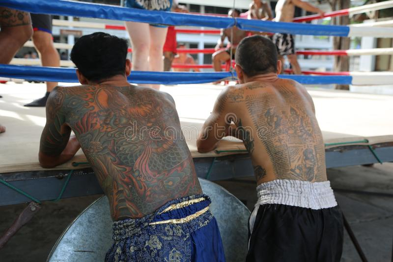 Tattoed Muay Thai Fighters royalty free stock photo