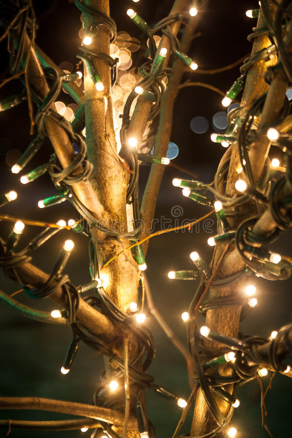 Shot of tree decorated with lights at night royalty free stock photos