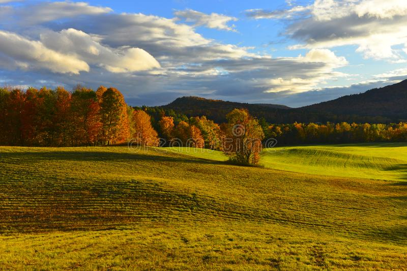 Shot of Vermont Meadow in Autumn stock images