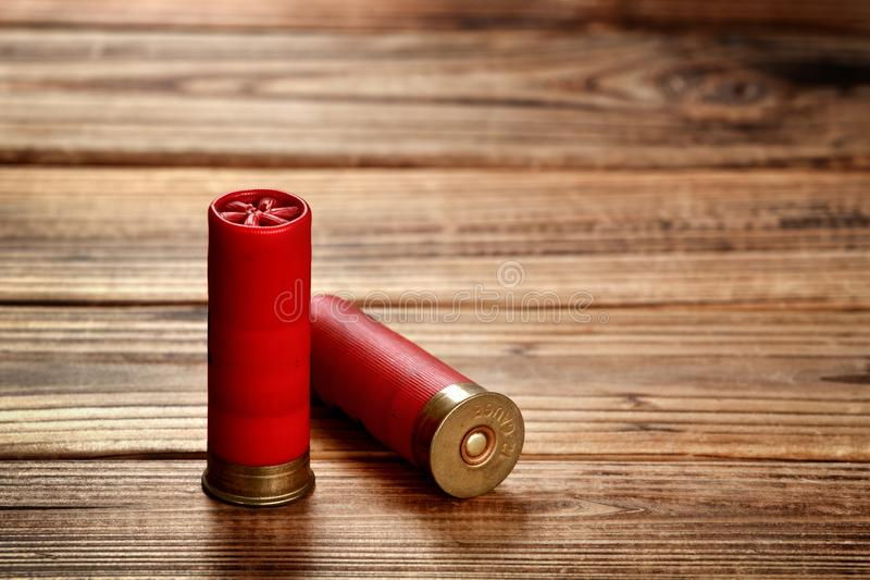 Shotgun Shells stock photo