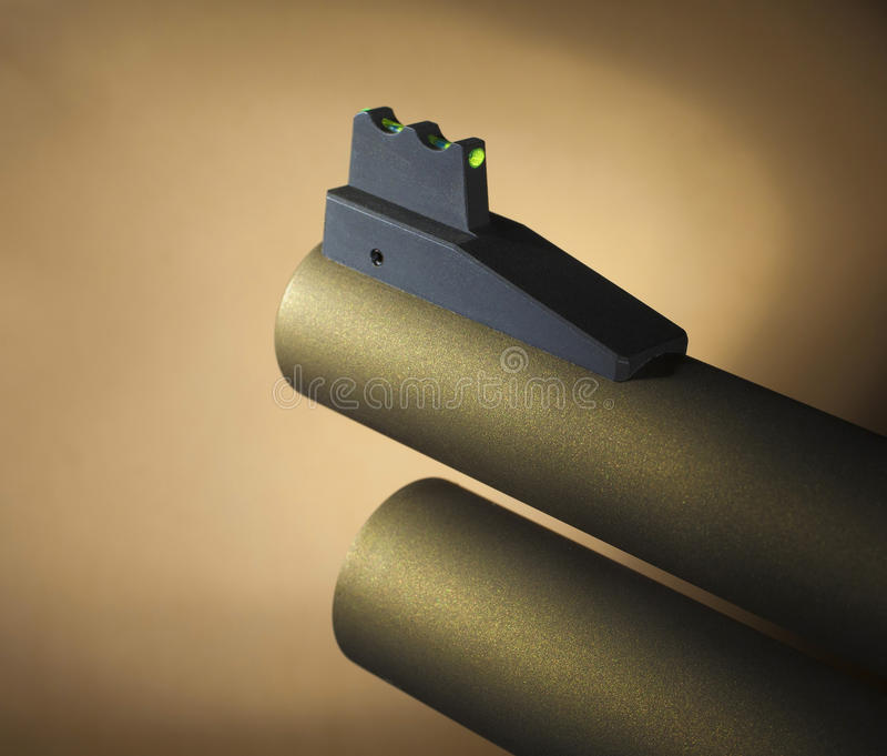 Shotgun& x27; vista da parte dianteira de s foto de stock