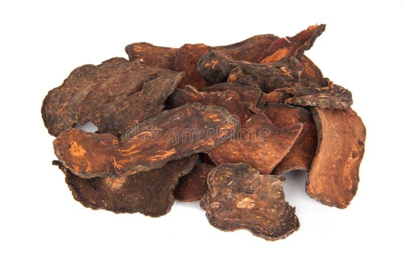 He Shou Wu Chinese or Polygonum Multiflorum Dried Herbs royalty free stock photo