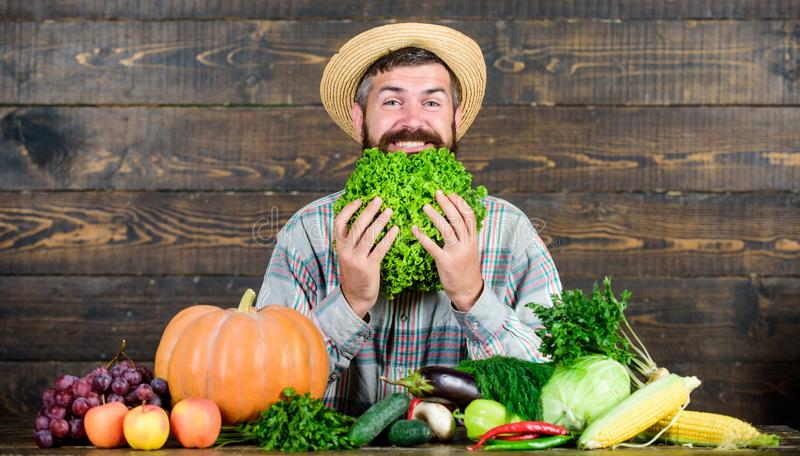 This should be fine. organic and natural food. happy halloween. seasonal vitamin food. Useful fruit and vegetable. Harvest festival. man chef with rich autumn royalty free stock image