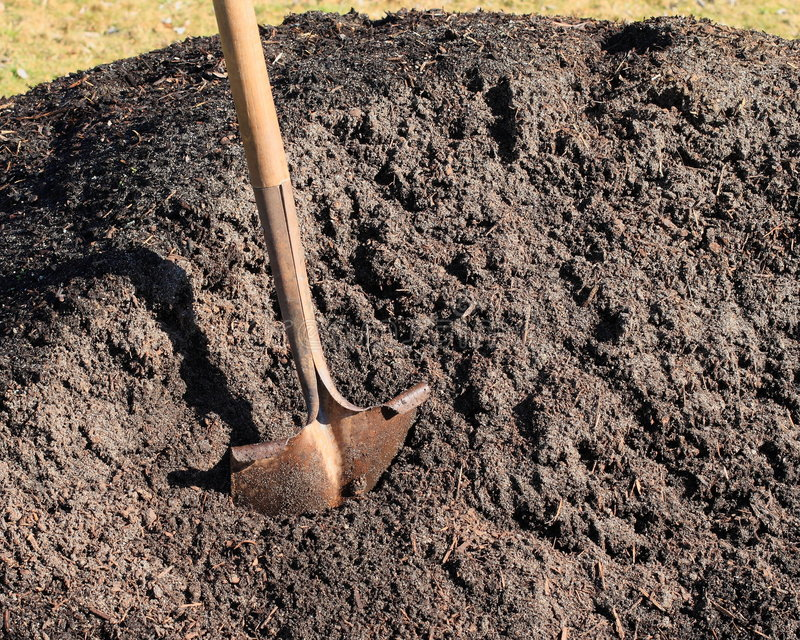 Download Shovel In Pile Of Topsoil Stock Images - Image: 4348394
