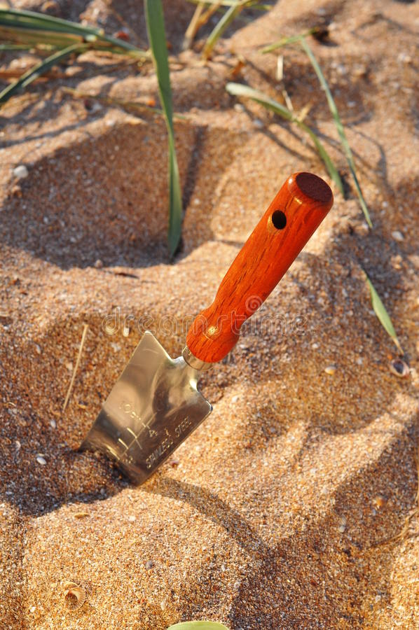 Shovel in the sand. Small shovel with deep markings and wooden brown handle. It's stuck in yellow beach sand, some drought tolerant grass is growing around royalty free stock image
