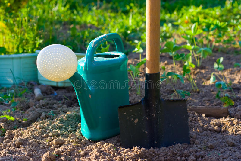 Download Shovel and watering can stock photo. Image of front, ground - 14381616