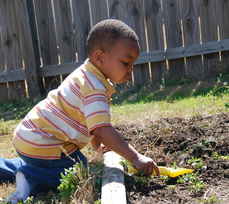 Free Shoveling Weeds Stock Images - 4479494