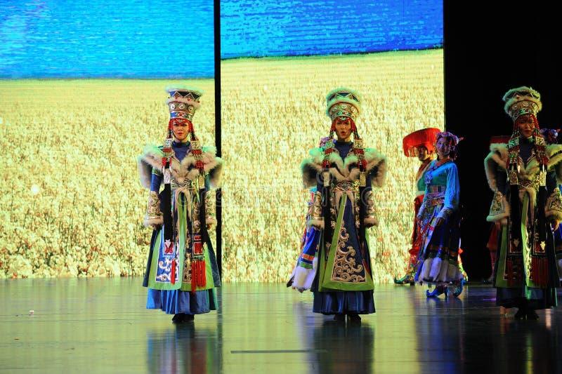  show†сценариев масштаба тибетских костюмов девушк-большое  legend†дороги стоковая фотография