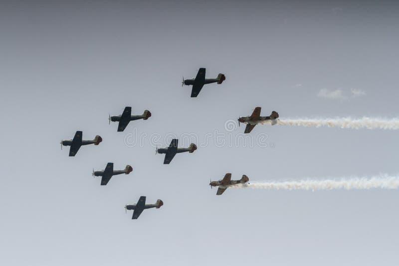 Show aereo fotografie stock