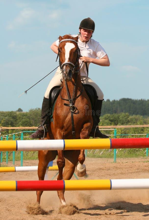 Show Jumping Royalty Free Stock Photos