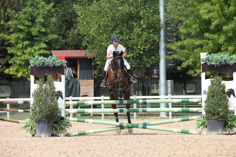 Download Show jumping editorial stock photo. Image of animal, horse - 21144123