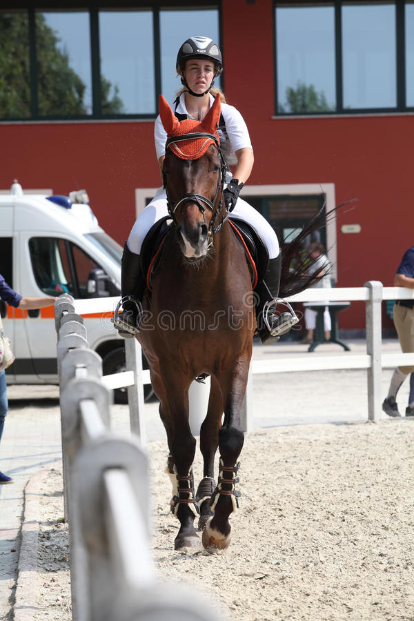 Download Show jumping editorial stock image. Image of show, ride - 21218979