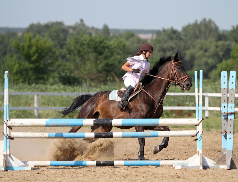 Download Show jumping editorial stock photo. Image of equitation - 25545388