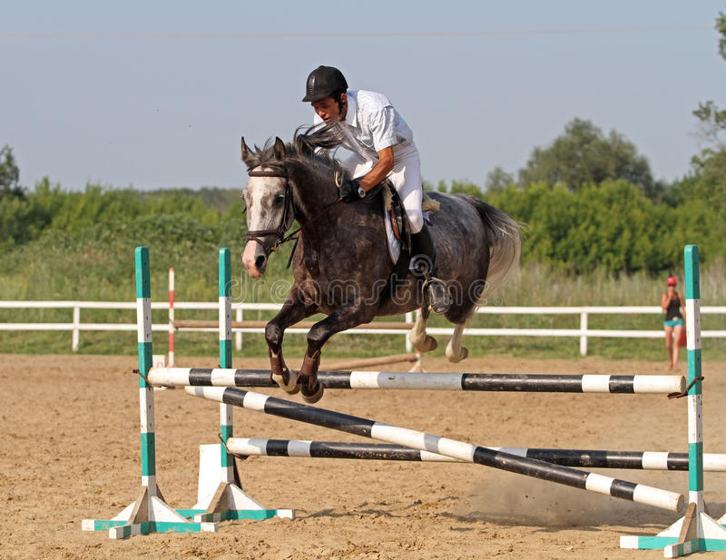 Download Show jumping editorial image. Image of fence, beauty - 25545390