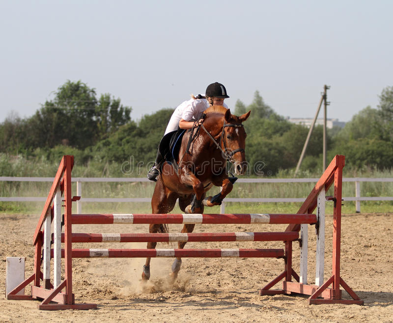 Download Show jumping editorial photo. Image of black, horseback - 25545391