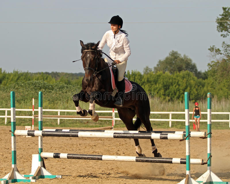 Download Show jumping editorial stock image. Image of horseman - 25545399