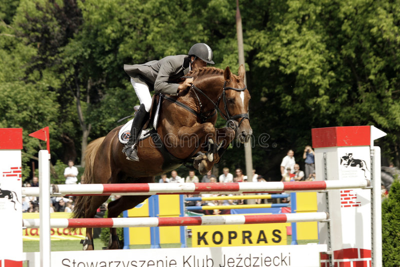Show-jumping, foto de stock